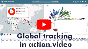 Watch our video showing global tracking of infectious disease