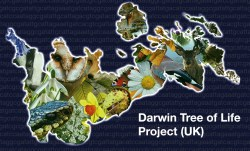Cordelia has the Darwin Tree of Life (UK) project firmly in her sights. The challenge is preparing, reading and assembling the genomes of the UK's 66,000 species is one she and her Scientific Operations teams are relishing