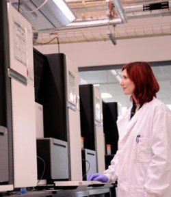 Sequencing machines processing malaria DNA at the Sanger Institute