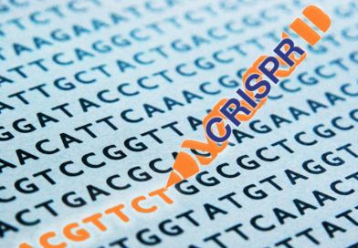 Cracking cancer with CRISPR