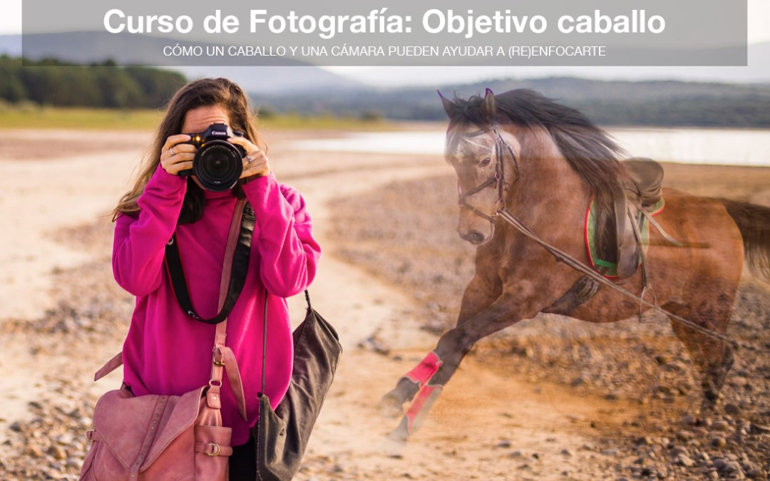 Curso de fotografía y Coaching con caballos | Coruña