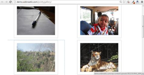 WordPress Pretty Gallery 1
