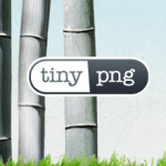 Optimizing Your Image Size Via TinyPNG API In WordPress