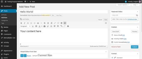 Visual Editor Font Size