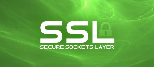 Why Choose A SANGKRIT.net SSL Certificate?