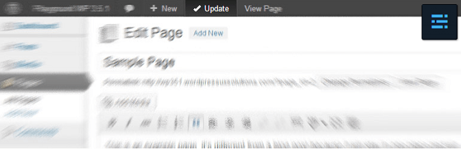 New Toolbar Publish, Update And Save Changes Button For WordPress