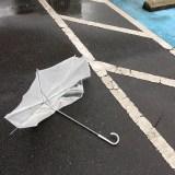 【オススメ】一本持っておけば安心。台風でも折れない丈夫な傘ブランド【BLUNT Umbrellas】