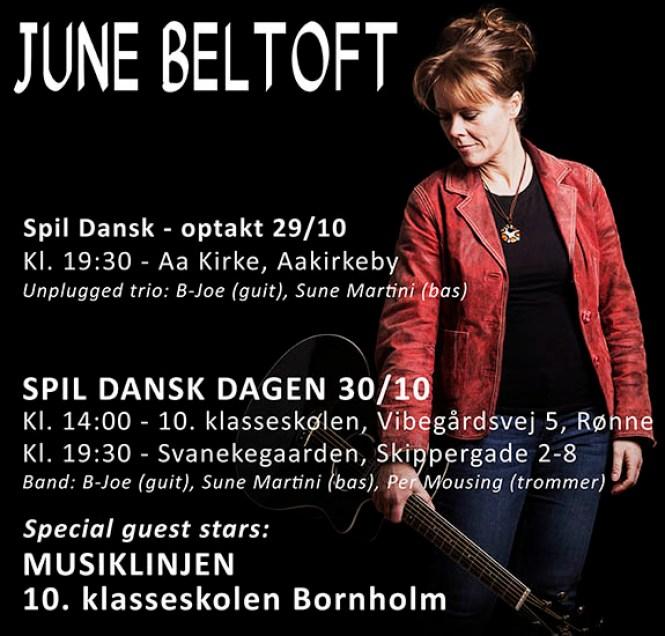 Spil Dansk 2014 June Beltoft udsnit af poster
