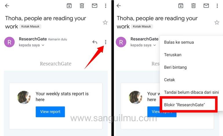 blokir email kotak masuk ResearchGate
