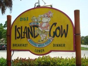island-cow