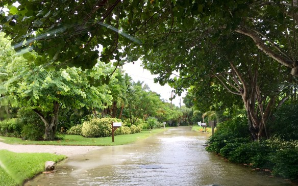 Anchor rain