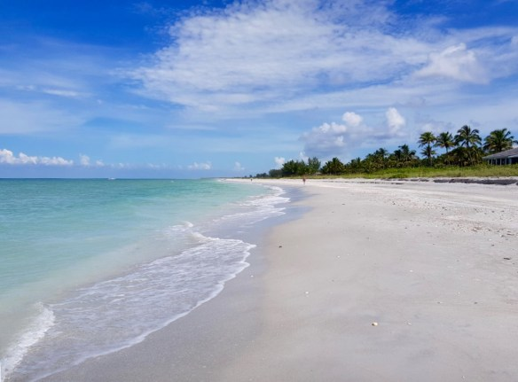 Nice beach shot
