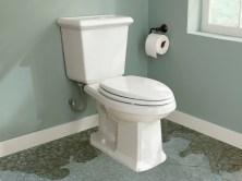 Leaking Flush