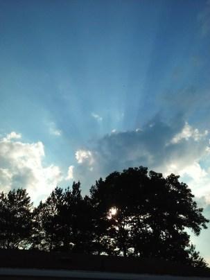 Sunrays1