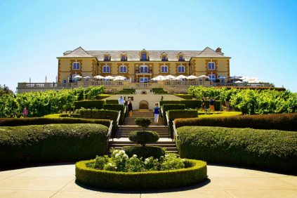 Domaine Carneros view