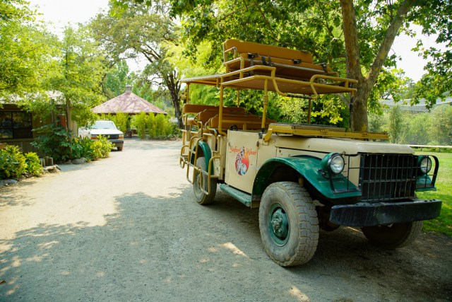 Safari West Jeep