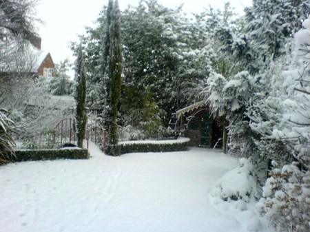 snow014