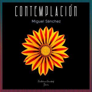 Contemplación: el álbum de Miguel Sánchez