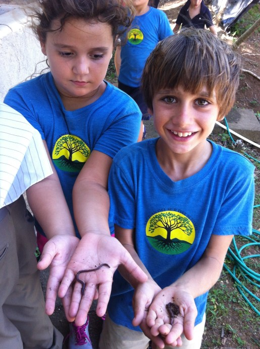 Los Rayos finding worms