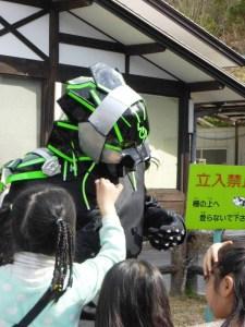 参加したイベントで子供にたてがみを引っ張られる雷音=3月、長野県下條村(本人提供)