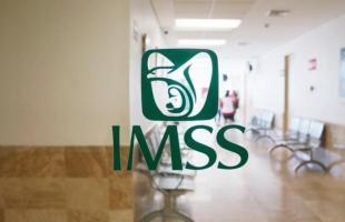 En un año afilia IMSS a 19 mil 648 personas trabajadoras del hogar