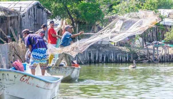 Publica Agricultura los lineamientos de operación del Programa de Fomento a la Agricultura, Ganadería, Pesca y Acuacultura