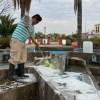 Mantenimiento constante a fuentes de plazas y jardines de nuestra ciudad