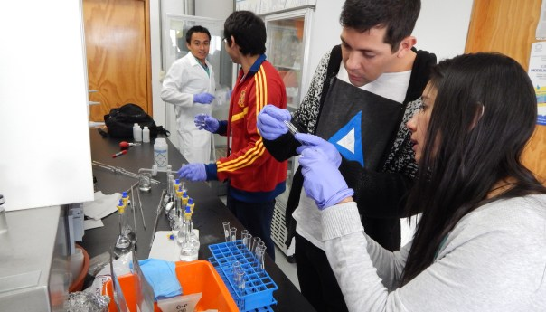 Descubren en IPICYT organismo que habita y es tolerante a agua altamente contaminada con arsénico