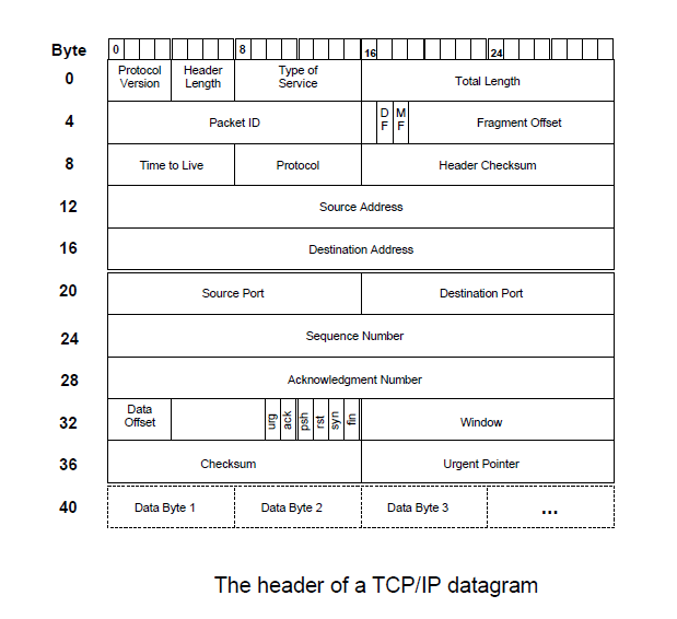 header of TCP IP datagram