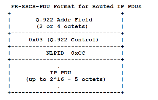 Routed IP PDUs