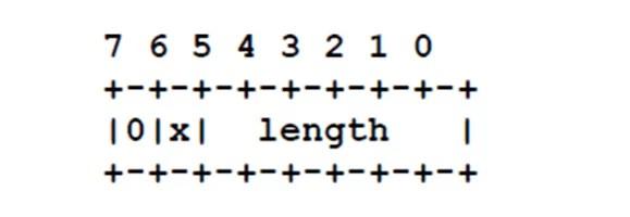 NTL format for IPv6/ATM