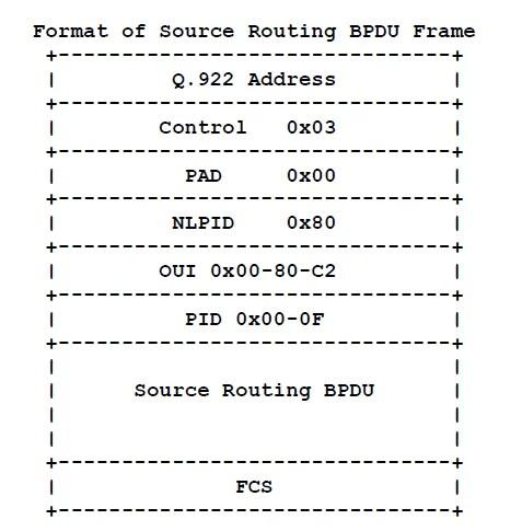 Routed BPDU frame