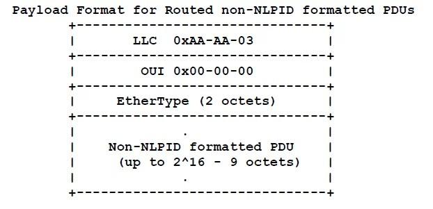 non NLPID-Formatted PDU