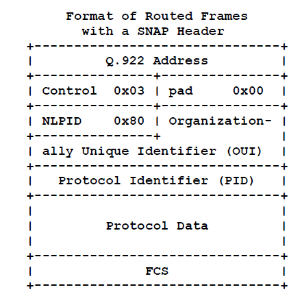 routed frames with SNAP header