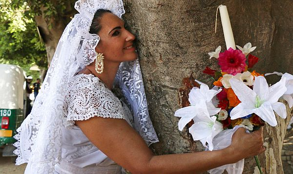 During the event, women donned bridal gowns to take vows under the boughs of their sap-filled spouses. While the marriage is not legally binding, it shines a spotlight on illegal logging. (Getty)