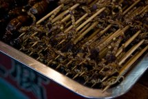 Nanluoguxiang_food_scorpions