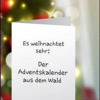Es weihnachtet sehr: Adventskalender im Winterwald