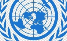 United Nations ( UN ) Human Rights Internship 2021 Is Open