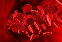 Анемия (малокръвие)
