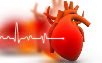 Нервно сърце