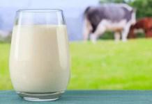 Млякото - елексир на дълголетието