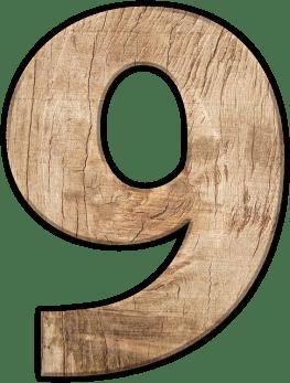 Число на живота - 9 Деветки - Хуманитаристът