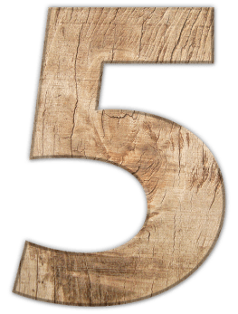 Число на живота - 5 Петици - Свободния дух