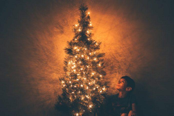 Малко познати факти за Коледа - Коледна Елха