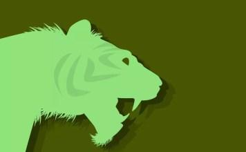 Китайски зодиак - Тигър