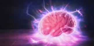 мозъка