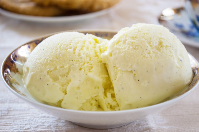 Vanilla Bean Ice Cream 21