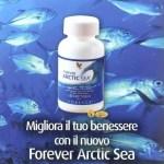 Viên dầu cá Forever Artie Sea 376 bán ở đâu giá rẻ?