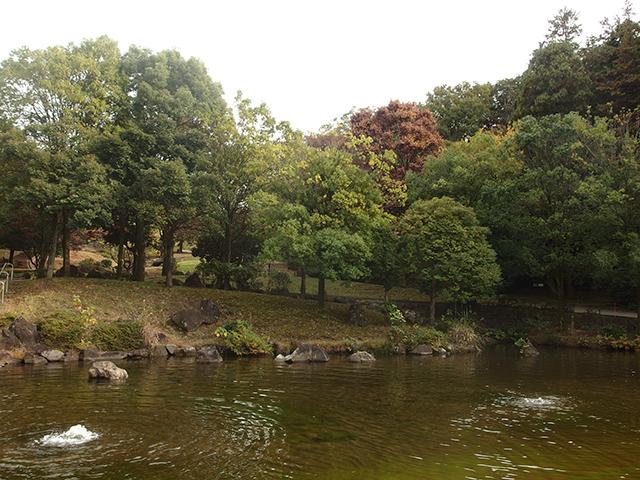 王禅寺ふるさと公園写真