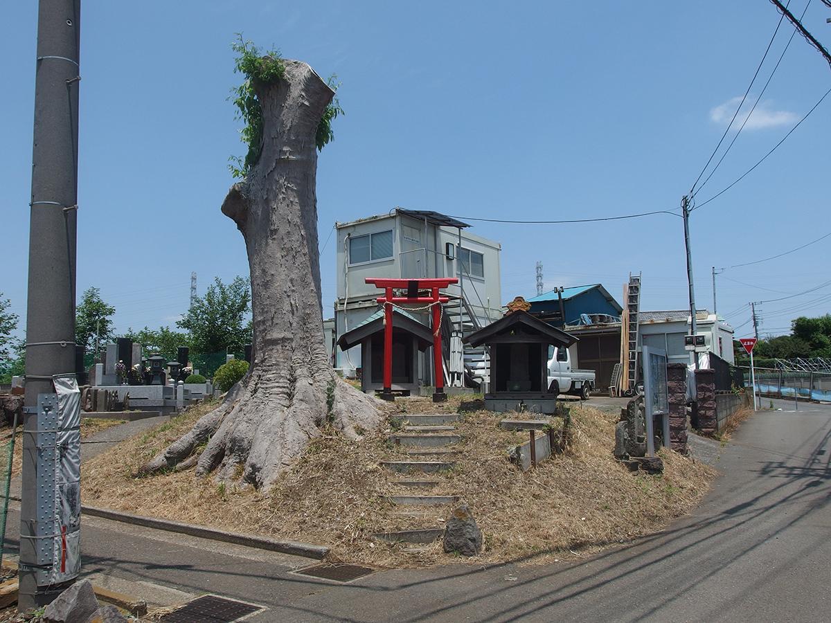 稲荷大明神(浜市都筑区川和町)写真